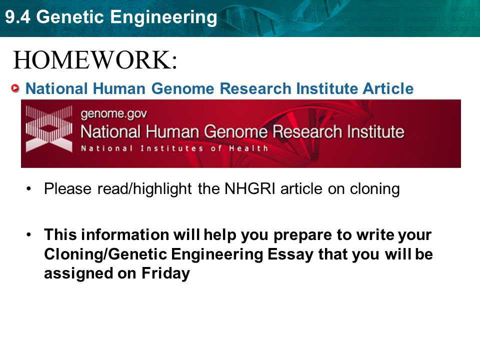 genetic engineering on humans essay Genetically modified humans no thanks toolbox resize print e-mail reprints by richard hayes tuesday, april 15, 2008 1:47 pm in an essay in sunday's outlook.