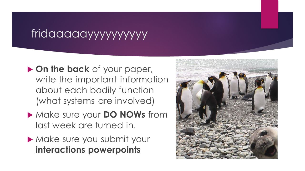 fridaaaaayyyyyyyyyy On the back of your paper, write the important information about each bodily function (what systems are involved)