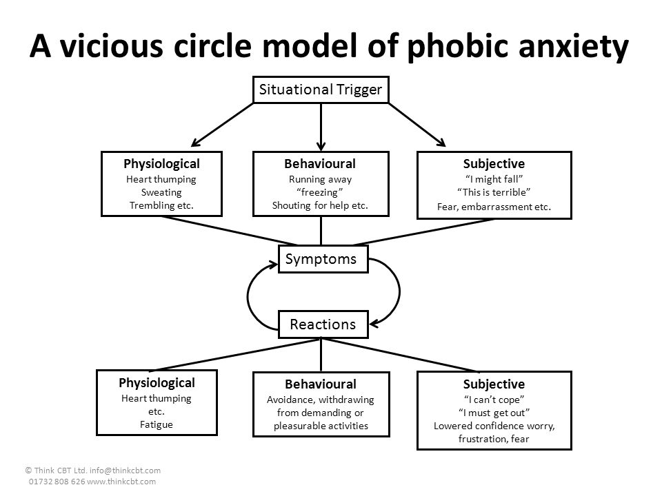 A vicious circle model of phobic anxiety