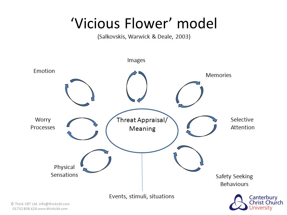 'Vicious Flower' model (Salkovskis, Warwick & Deale, 2003)