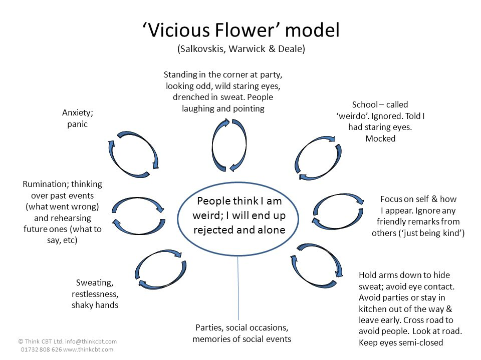 'Vicious Flower' model (Salkovskis, Warwick & Deale)
