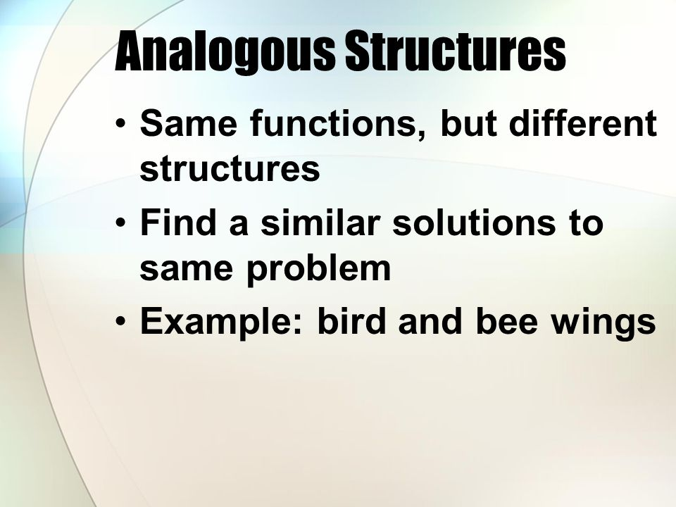 Analogous Structures Same functions, but different structures