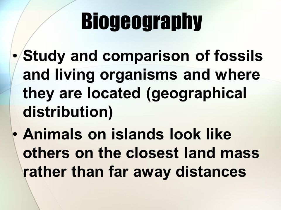 Biogeography Study and comparison of fossils and living organisms and where they are located (geographical distribution)