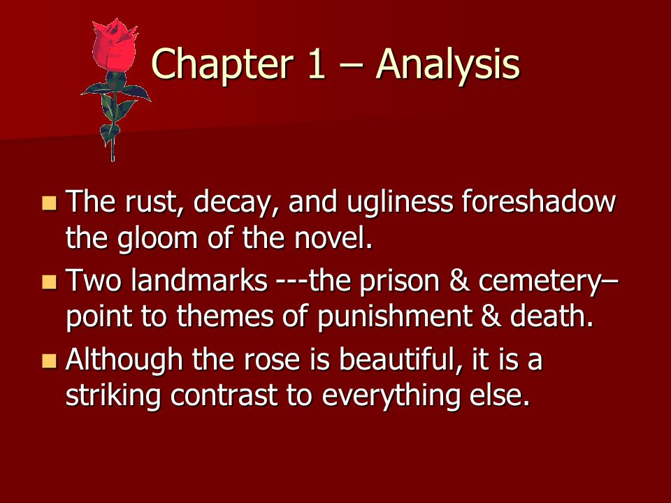 Analysis of chapter 1 of the