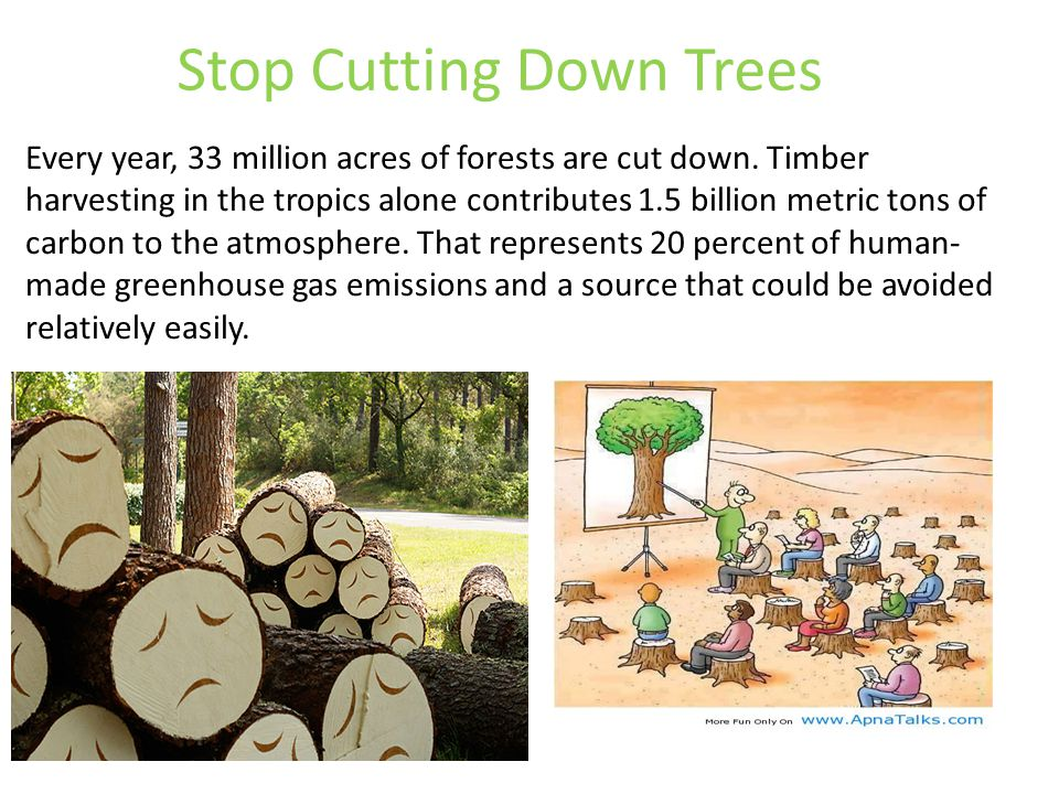 cutting down trees essay Cutting down trees, smoke from factories, exhaust system from cars, trucks, and motorcycles all contribute greenhouse gases being released causing global warming environment by not cutting as many trees down to make so much paper laptops are beneficial for the environment to grow.
