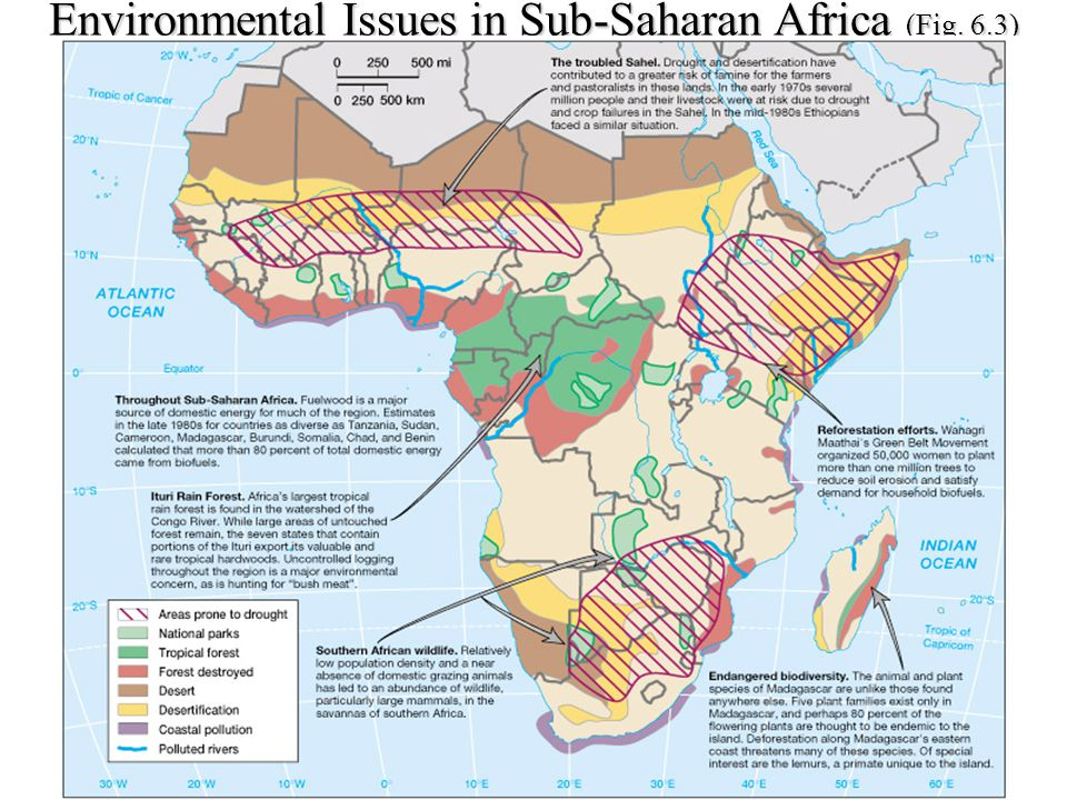 environmental effects on sub saharan africa Changing environmental conditions are likely to prompt human migration,   these four nations, separated by the sahara desert, are rarely analyzed as a   in sub-saharan africa has the potential to indirectly affect algeria by.