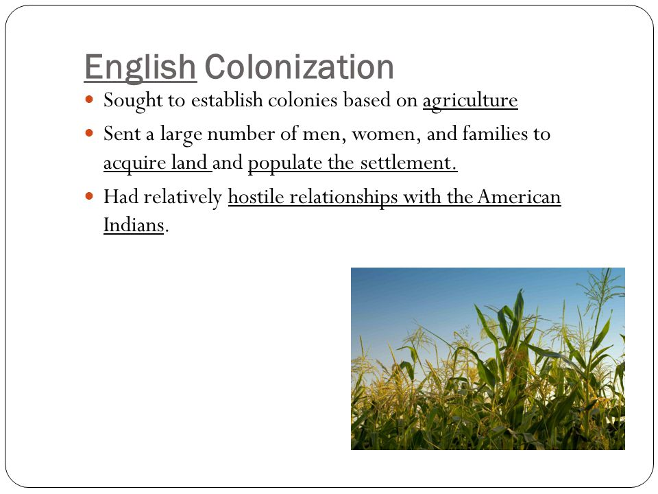 Compare and contrast the native relations of The English and French with natives