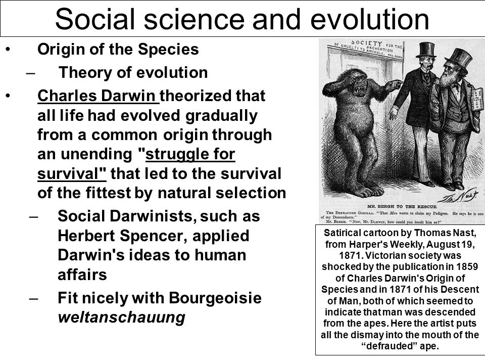 herbert spencer and the evolution of society Thus he drew an analogy between the living organism and human society in  idea of spencer on social evolution (short essay  herbert spencer, evolution.