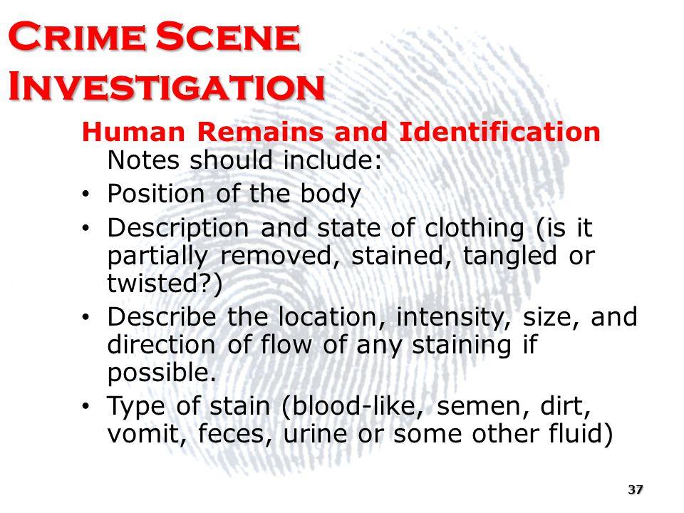 Crime Scene Investigation - Ppt Download