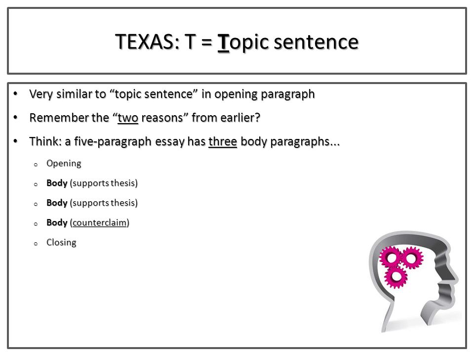 topic essays for texas state