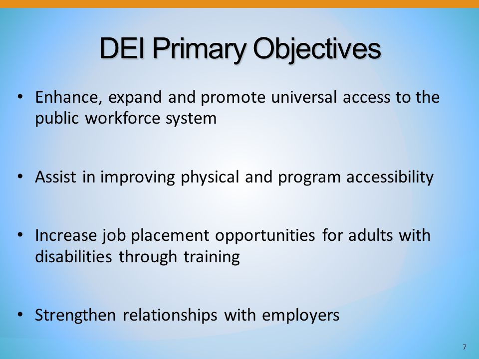 DEI Primary Objectives