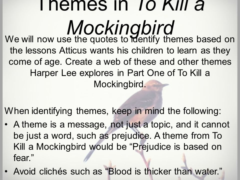 to kill a mockingbird the importance Few characters in 'to kill a mockingbird' are as memorable as calpurnia this  lesson explores calpurnia's character, traits, and her role in this.