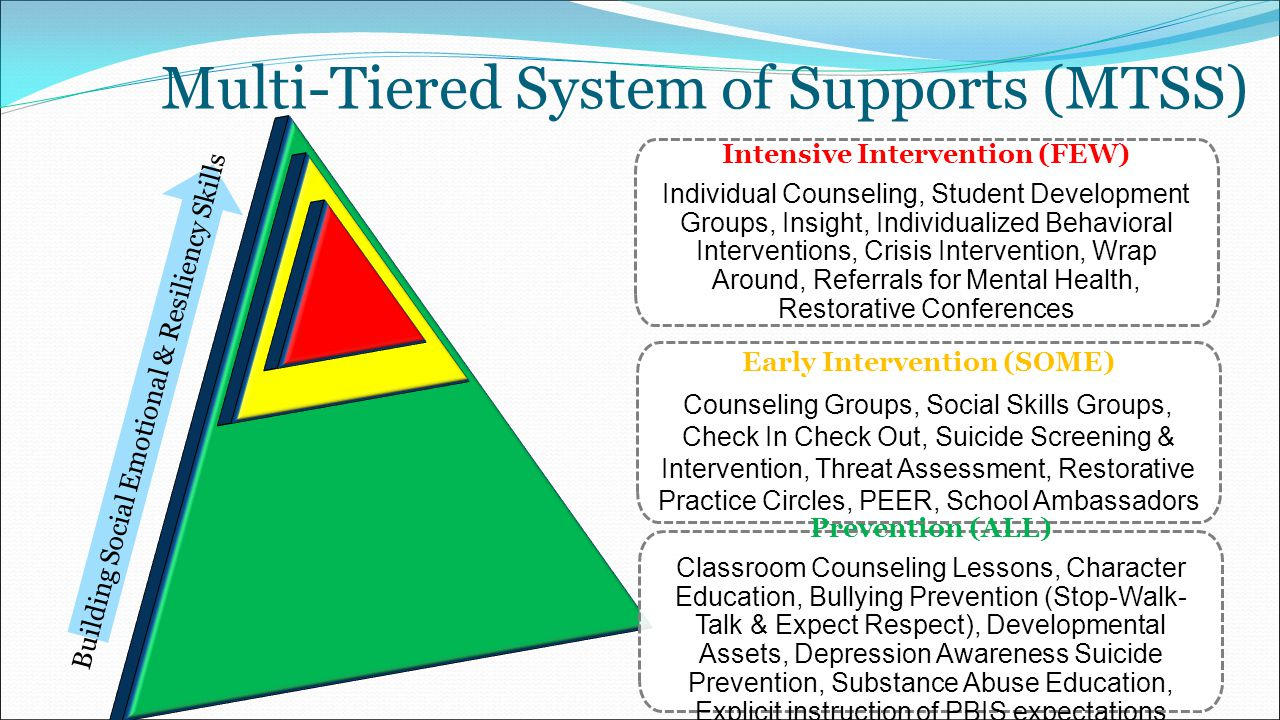 how to become a positive behavioural support specialist