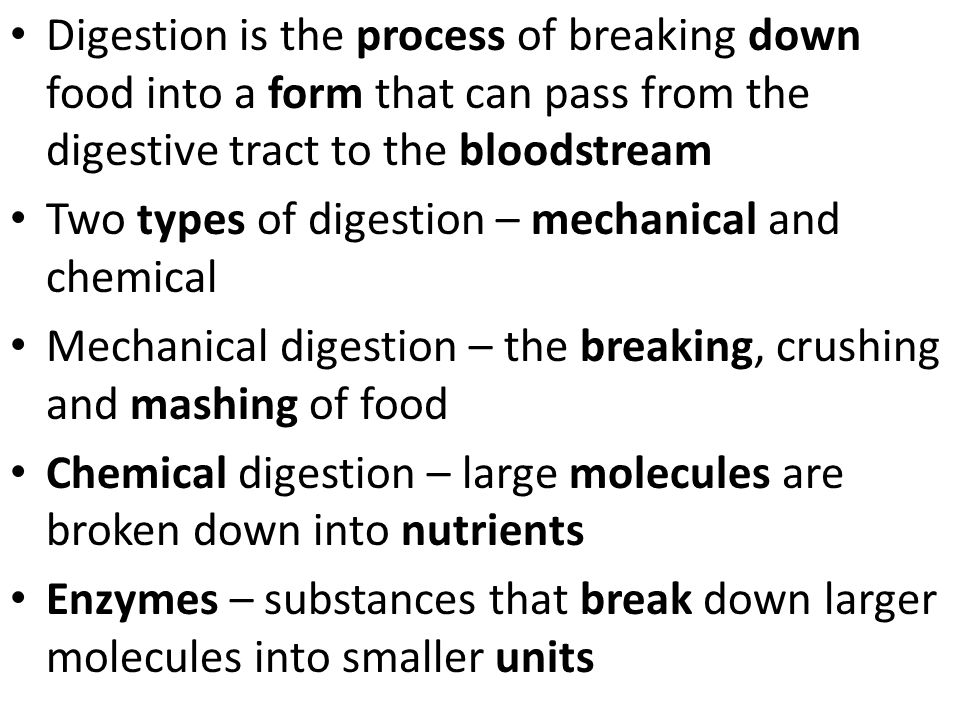 chemical digestion of foodstuffs enzymatic action The action of swallowing pulls the food down through the pharynx, or throat, and   chemical digestion begins in the stomach, a large, hollow, pouchlike   although bile does not contain enzymes, it does have bile salts that help dissolve  fats  meals as well as in a very diverse array of foodstuffs to meet nutrient  needs.
