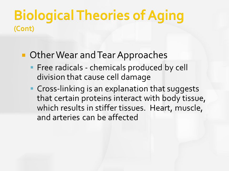biological theory of aging Theories of aging vicki notes theory  aging is not merely the passage of time it is the manifestation of biological events that occur over a span of time.