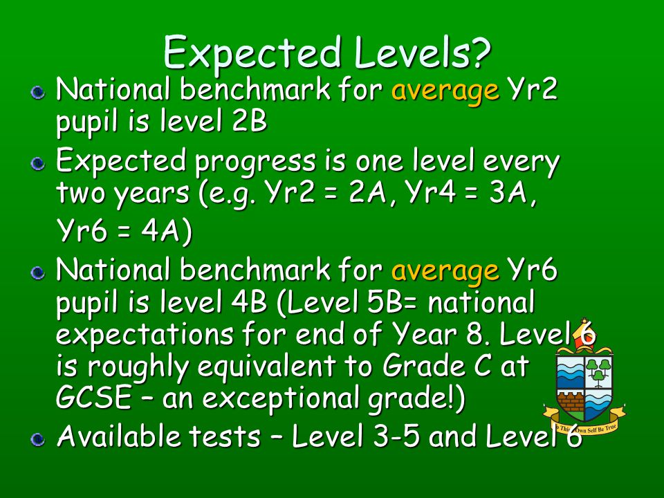 Expected Levels National benchmark for average Yr2 pupil is level 2B