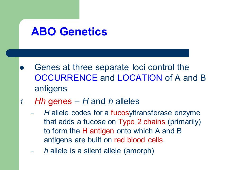 Glad abo blood group genetics It's