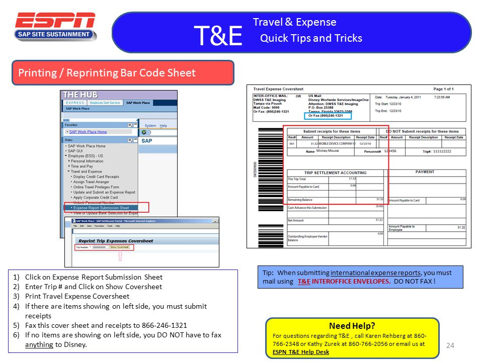travel and expense reports