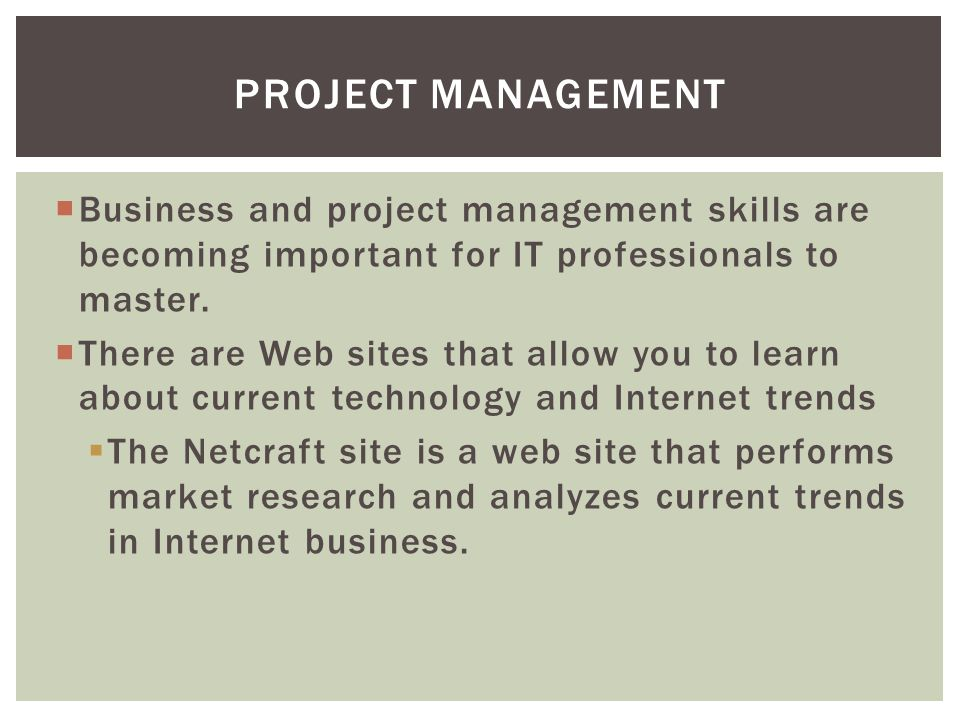 Project Management Business and project management skills are becoming important for IT professionals to master.
