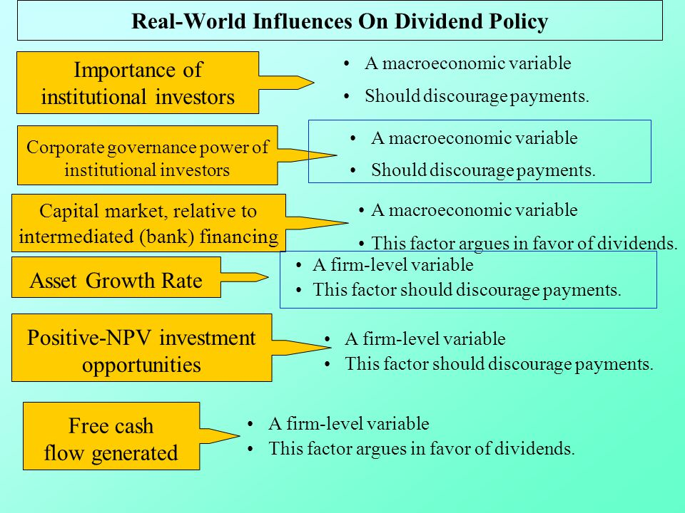 essays on dividend policy theories