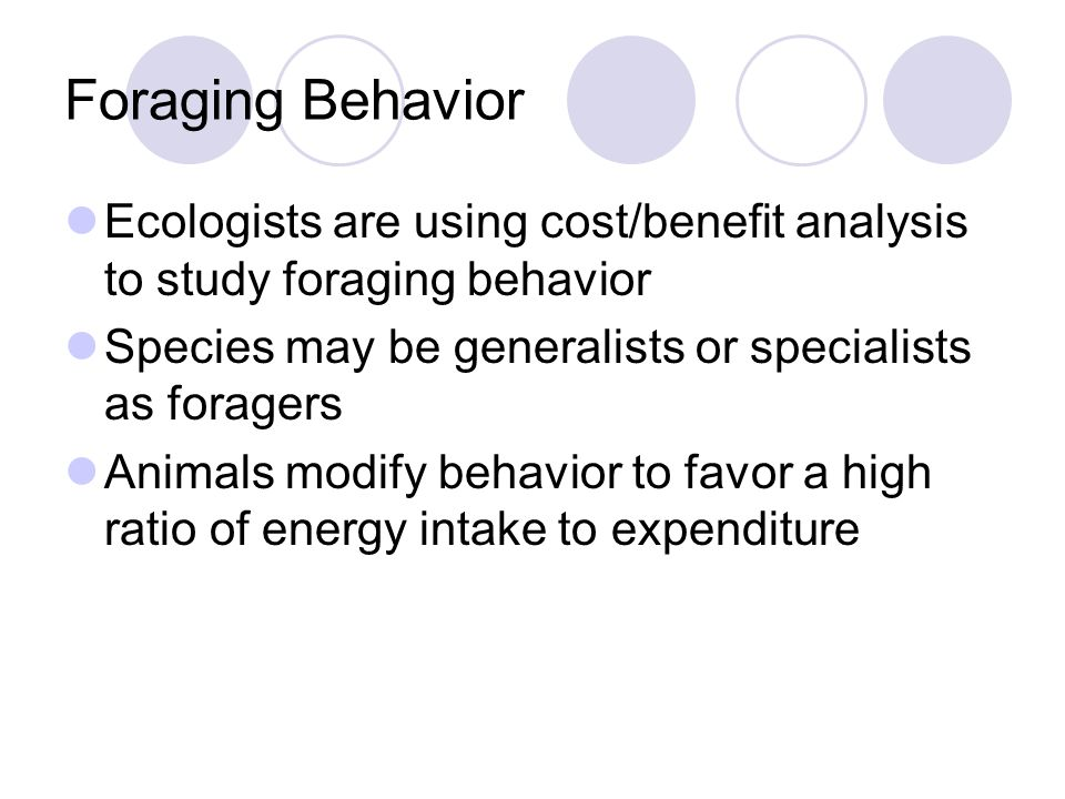 an introduction to the analysis of animal behavior The study of animal behavior introduction the scienti c study of animal behavior is also called ethology, a term used question they are addressing when they study animal behavior tinbergen's analysis is.