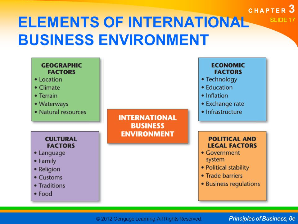 ELEMENTS OF INTERNATIONAL BUSINESS ENVIRONMENT