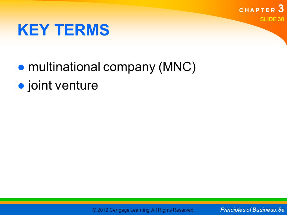 KEY TERMS multinational company (MNC) joint venture