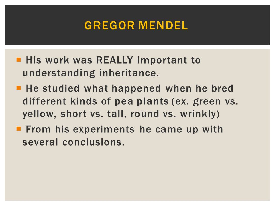 Gregor Mendel His work was REALLY important to understanding inheritance.