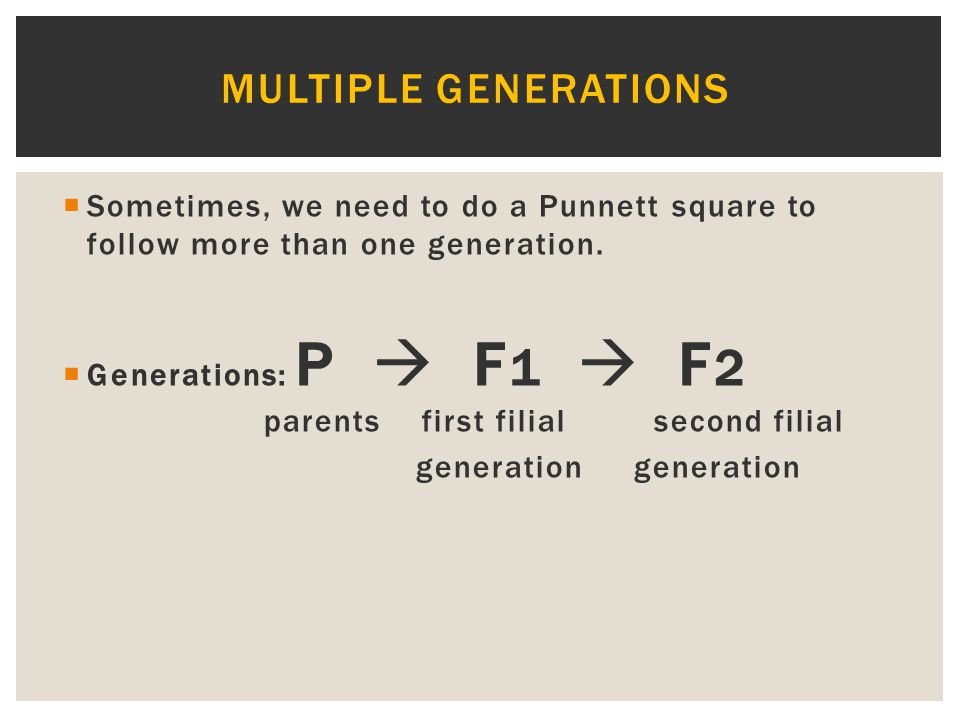 Multiple generations Sometimes, we need to do a Punnett square to follow more than one generation.