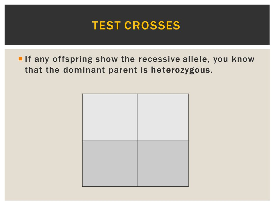Test crosses If any offspring show the recessive allele, you know that the dominant parent is heterozygous.