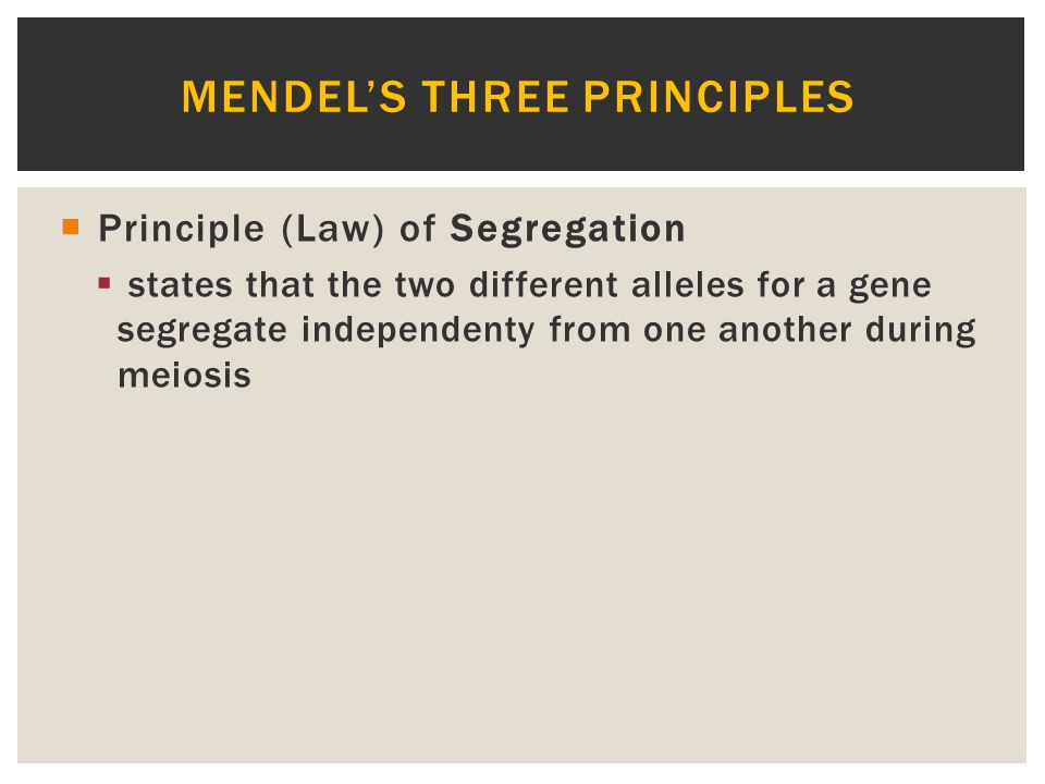 Mendel's three Principles
