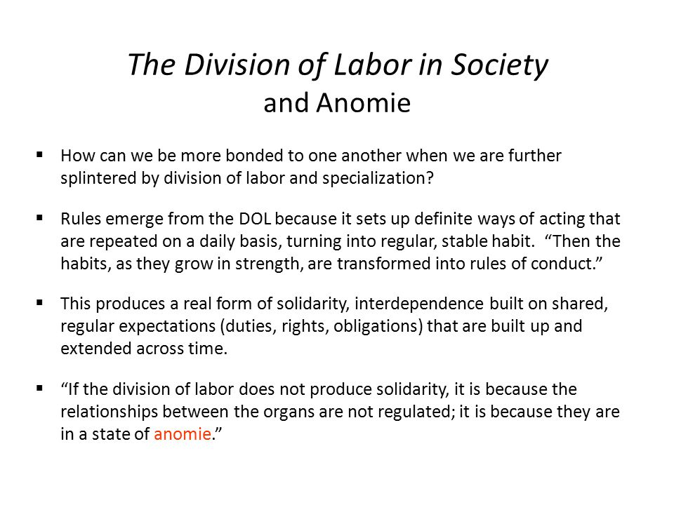 relationship between specialisation and division of labour in society