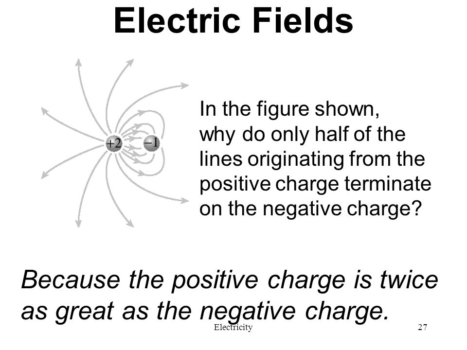 Electric Fields In the figure shown, why do only half of the lines originating from the positive charge terminate on the negative charge