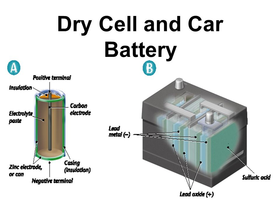 Dry Cell and Car Battery