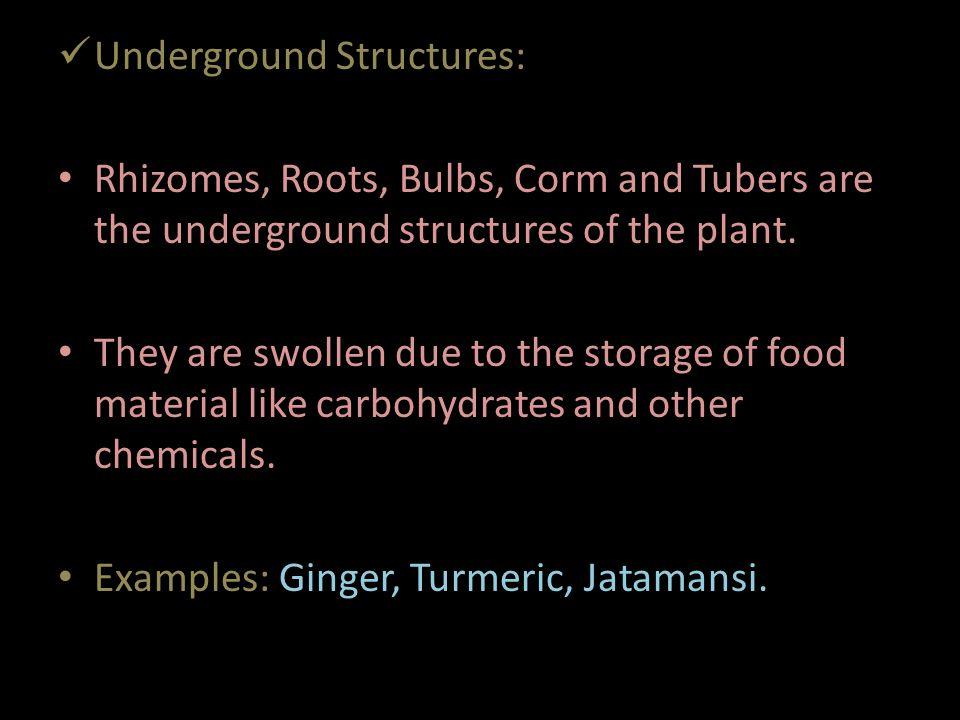 Underground Structures: