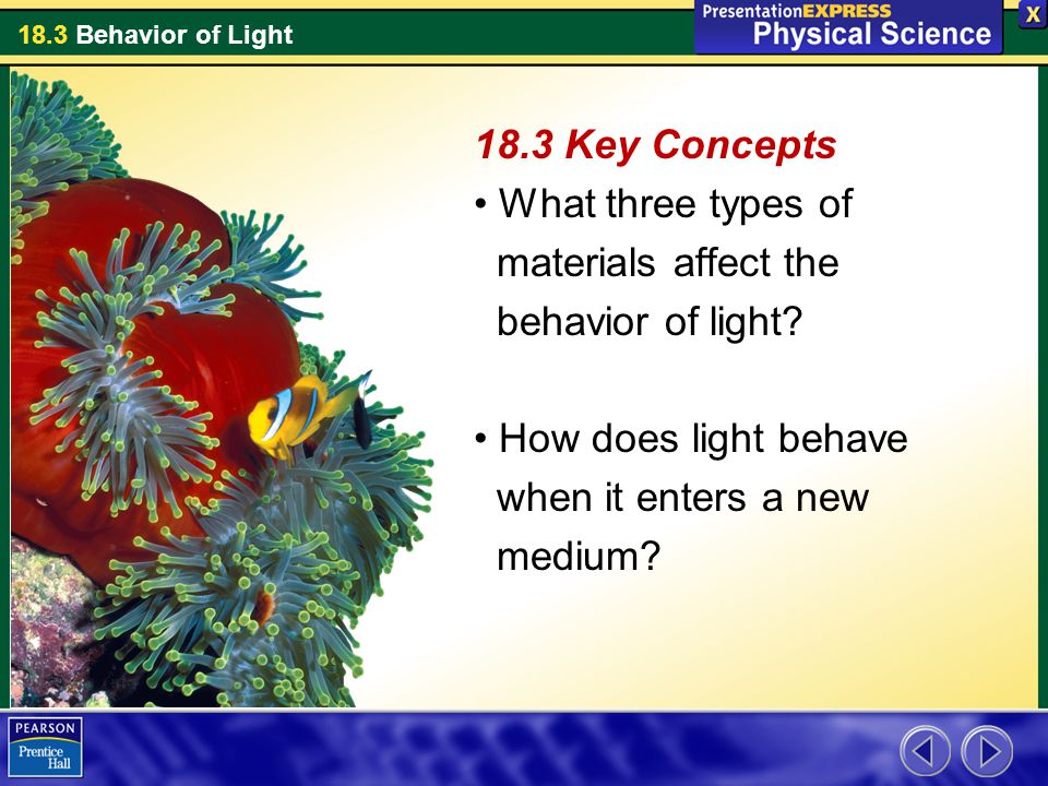 37eb5d8d92bb 18.3 Key Concepts What three types of. materials affect the. behavior of  light How