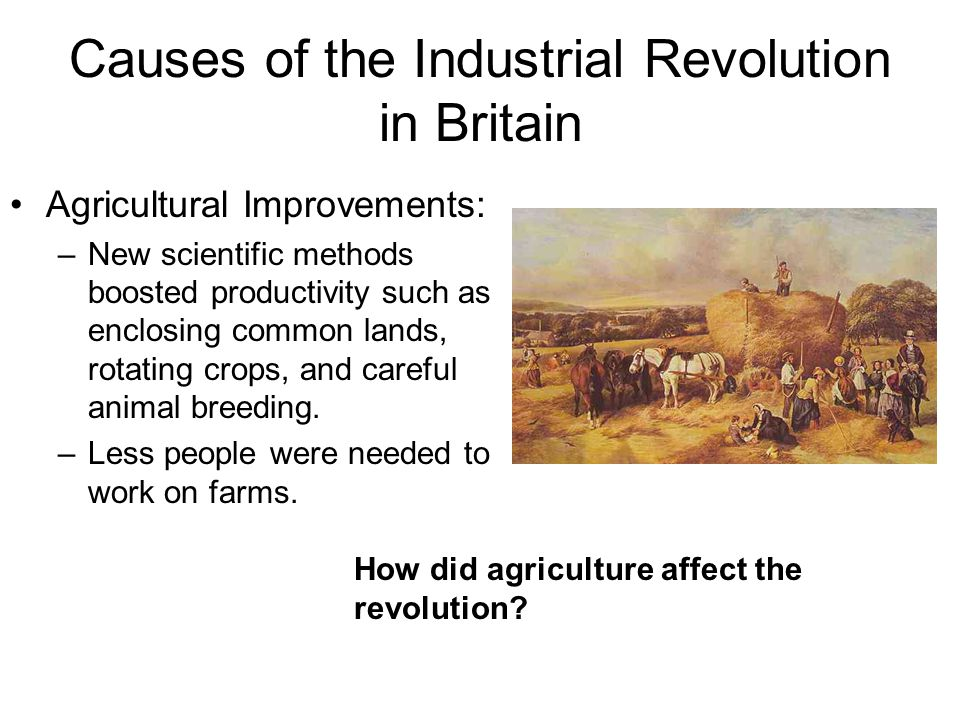 how did the industrial revolution affect The effects of the industrial revolution ranged from energy sanitation and   hence, all this air pollution did not only contribute to climate change.