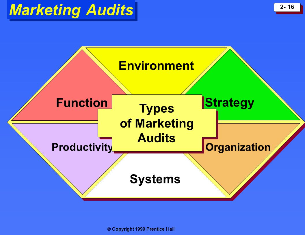 Marketing Audits Environment Function Strategy Types of Marketing