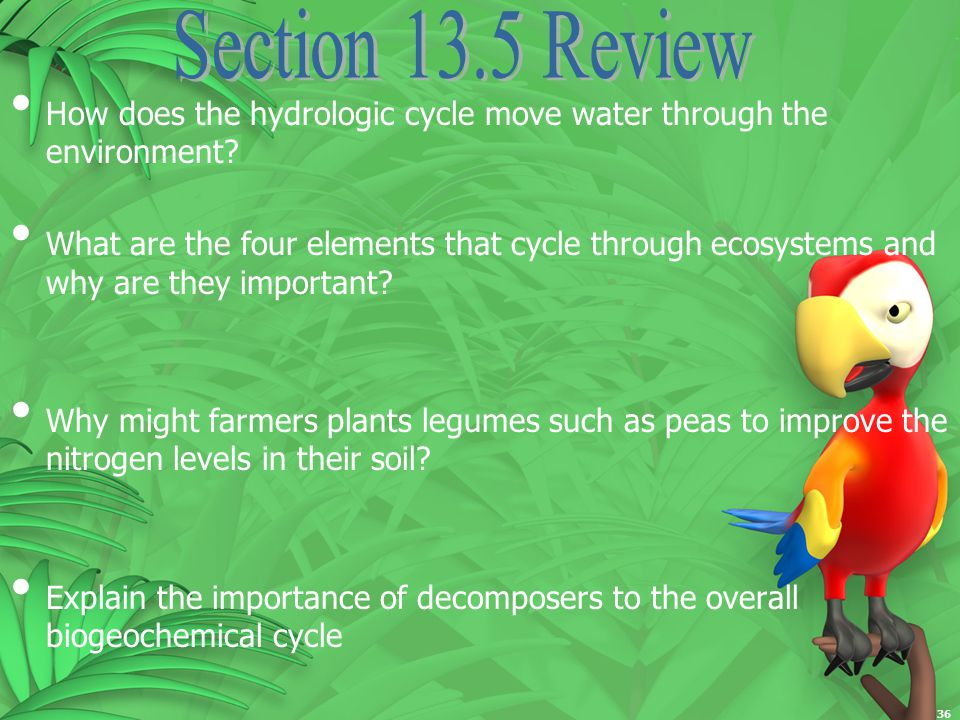 a summary of the cycle of chemicals through the ecosystem 31 what is ecology lesson objectives food chains and food webs energy flows through an ecosystem in one direction describe how the availability of nutrients affects the productivity of ecosystems lesson summary recycling in the biosphere matter.
