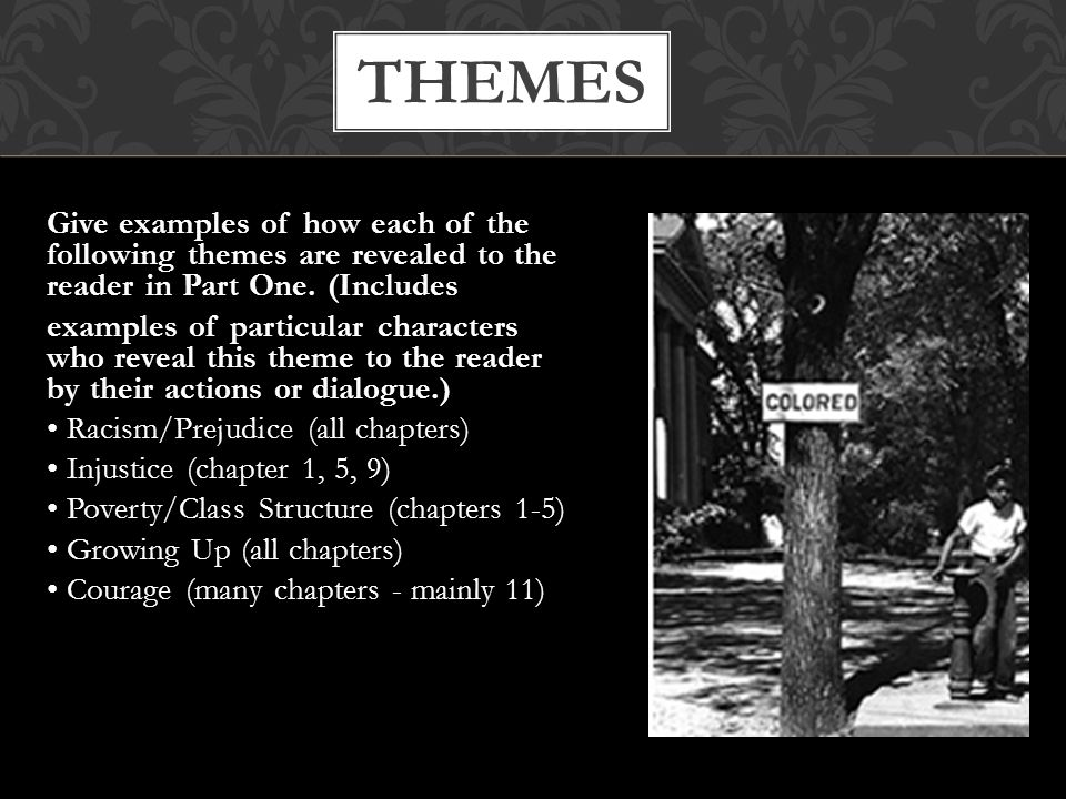 the themes of racial prejudice social hierarchy and justice in the novel to kill a mockingbird by ha In the story to kill a mockingbird, scout wanted to visit calpurnia's house but aunt alexandria forbade it from happening (lee 181) autobot twins : mudflap and skids in this video it discusses battle plans to invade canada.