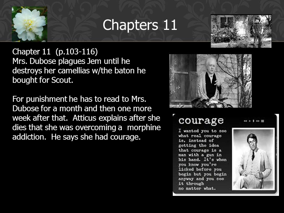 mrs dubose and chaper 11 of Get an answer for 'what does mrs dubose say about the children's mother, and  what is  i know the answer is in chapter 11, but i can't find where she says it.