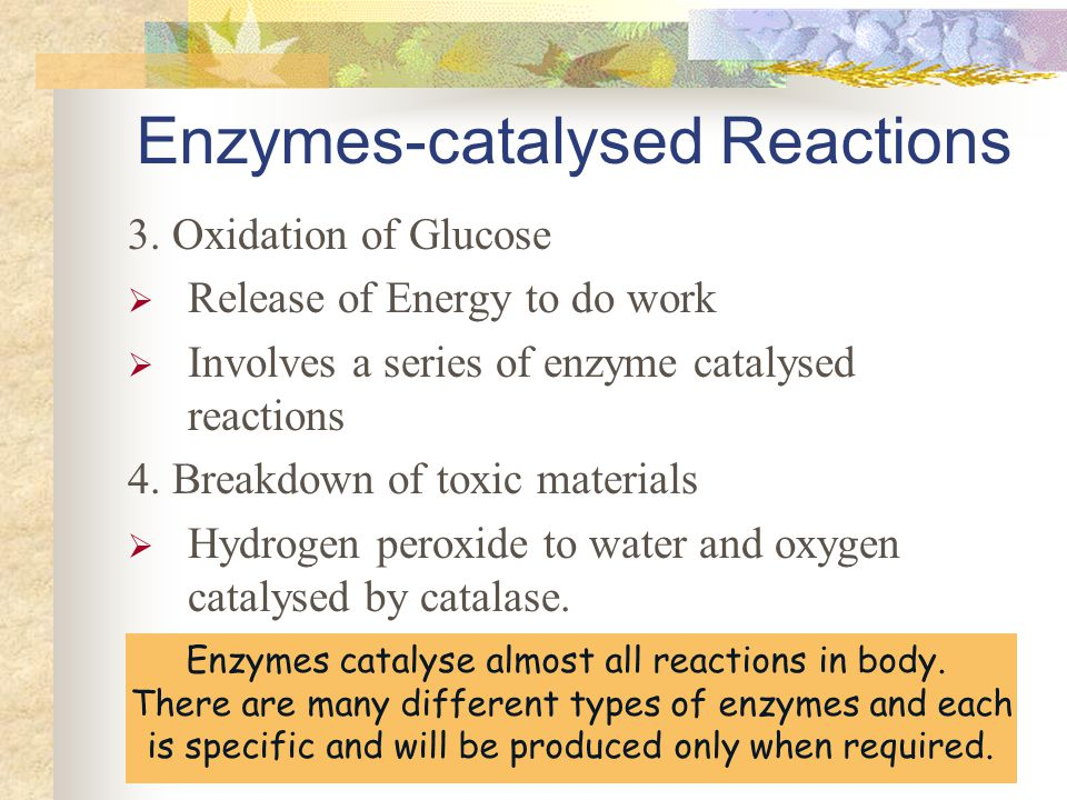 the characteristics of catalase an enzyme Physicochemical characteristics reflecting their entatic state  component of but one enzyme,  catalase is at least a million times more.