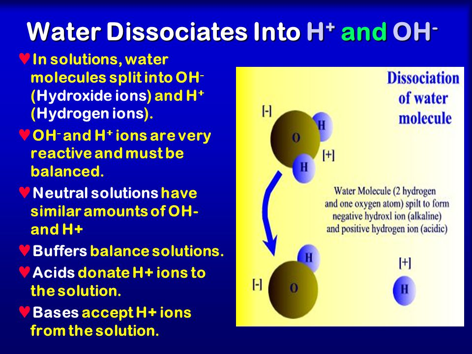 Dissociation of Water and concept of Buffers - ppt video online ...