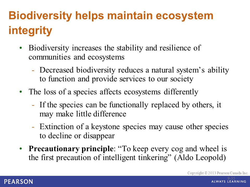 precautionary principle in biodiversity Climate change, affluence, technological change, and human & environmental well-being, biodiversity, food security, precautionary principle, ethics, air pollution.