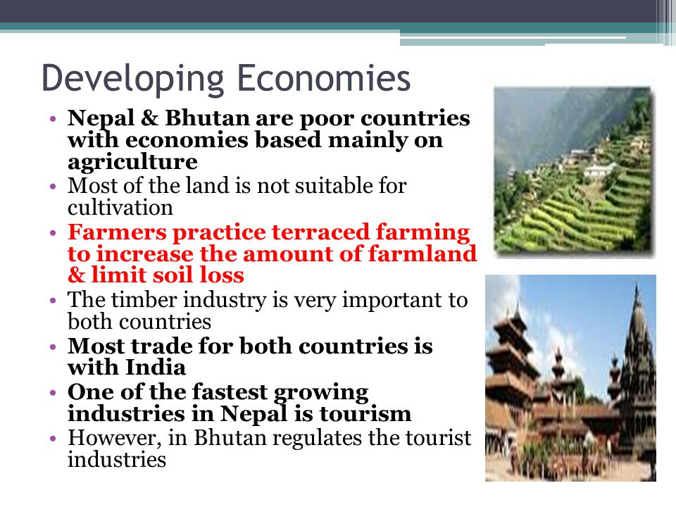 Developing Economies Nepal & Bhutan are poor countries with economies based mainly on agriculture.