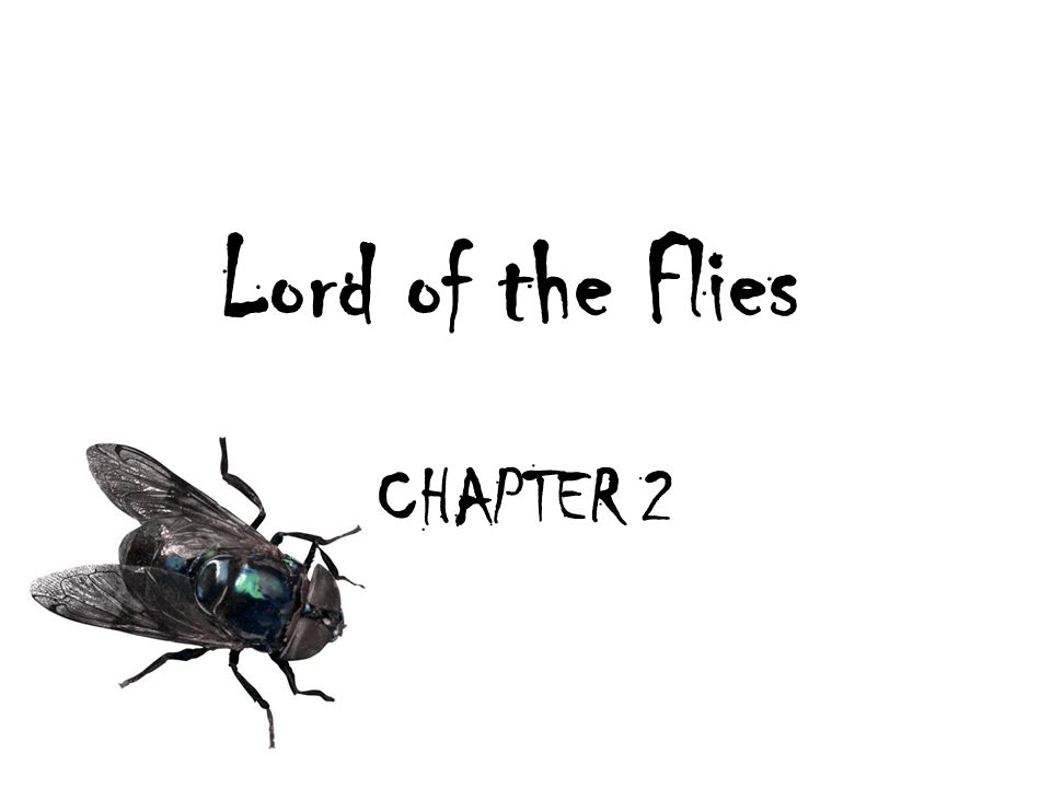 lord of the flies chapter 2 pdf