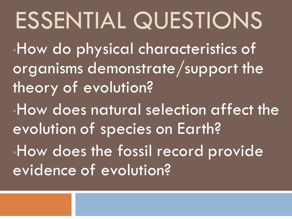How Do Environmental Changes Affect Natural Selection