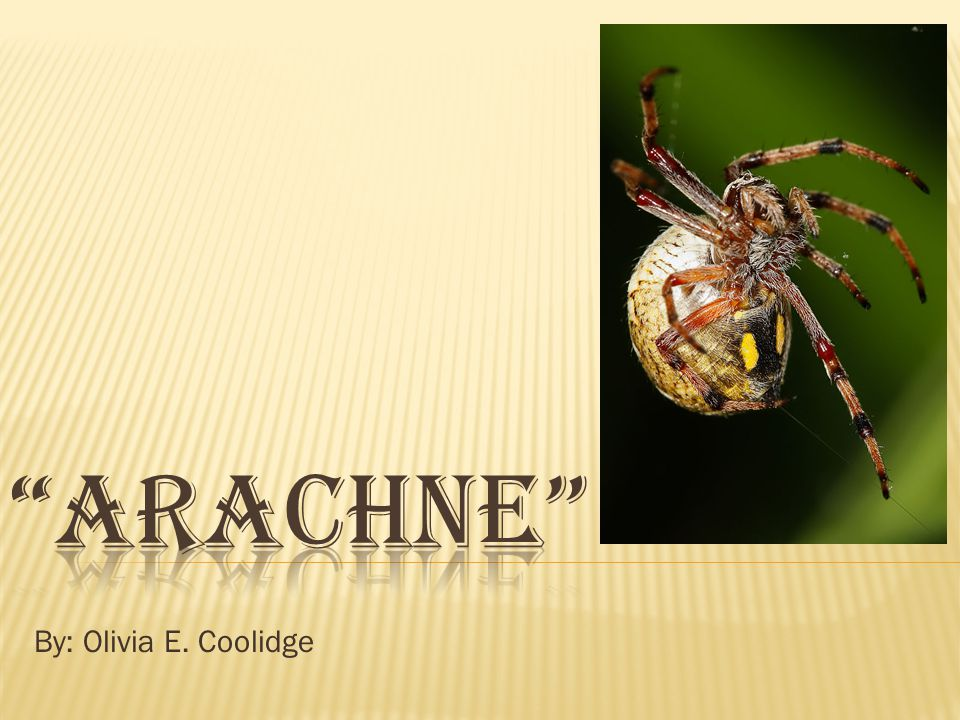 Arachne By: Olivia E. Coolidge