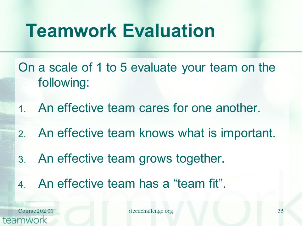Teamwork Evaluation On a scale of 1 to 5 evaluate your team on the following: An effective team cares for one another.