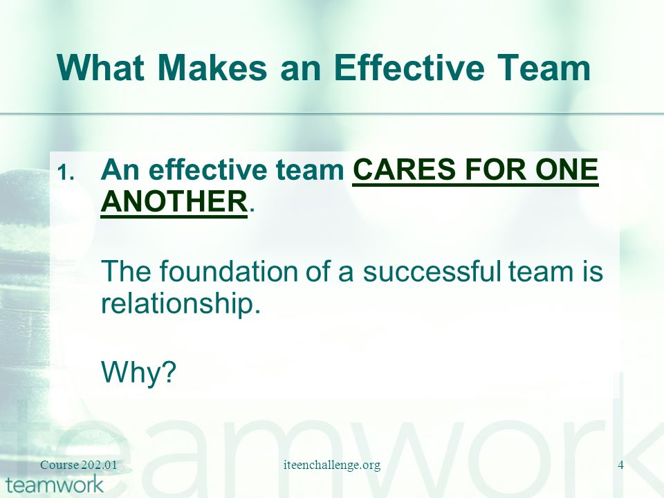What Makes an Effective Team